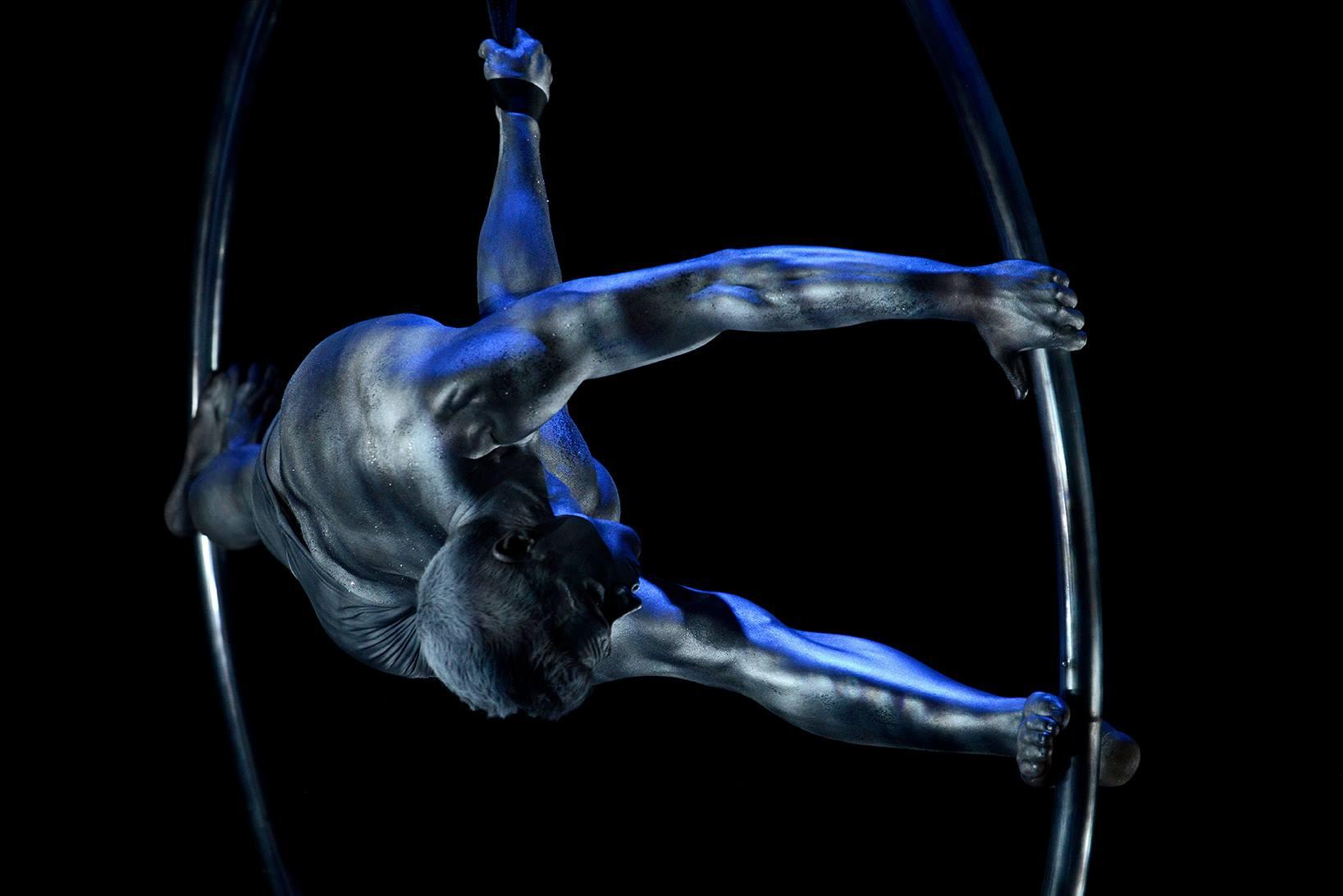 37ème festival du Cirque de Demain